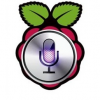 raspberry pi voice recognition
